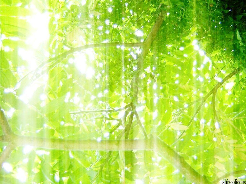 Texture,  texture light powaaa ! Lr2dkbnv
