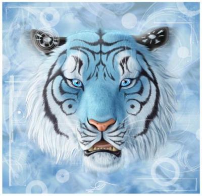 Tigre page 3 - Image tete de tigre ...